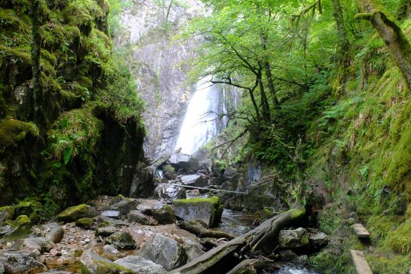 Photo of Grey Mare's Tail waterfall