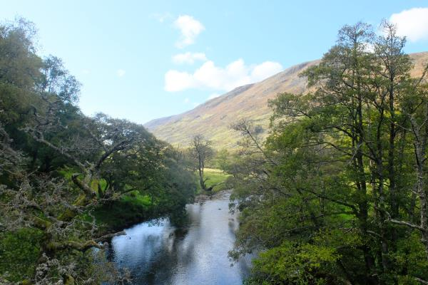 Photo of Bright weather in Glen Almond at end of walk